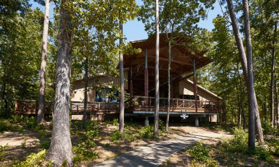 Tent or RV camping, cabins or group camps are available at South Toledo Bend State Park