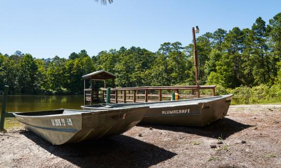 Rent a boat at South Toledo Bend State Park