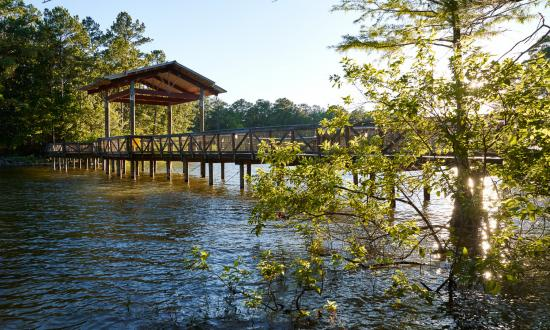 Toledo Bend is consistently ranked among the top bass lakes in the U.S.